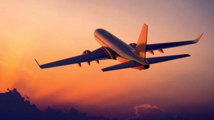 falda uçak görmek
