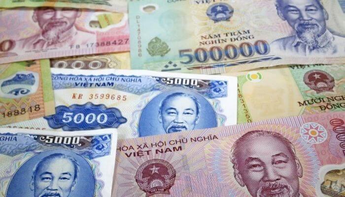 Vietnam para birimi