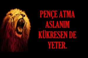Sevgiliye Galatasaray sözleri