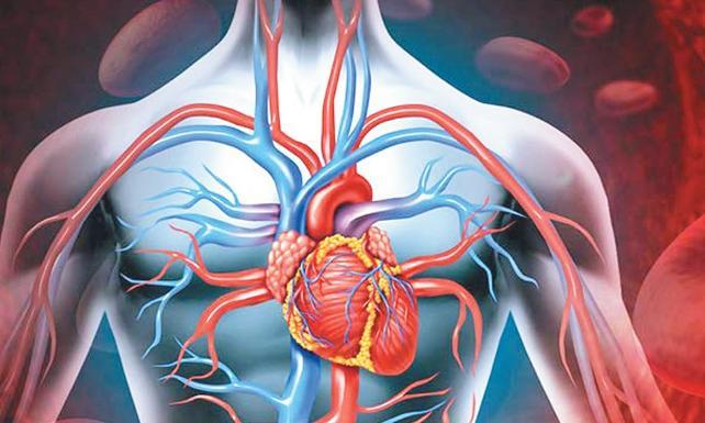 damar sertliği neden olur